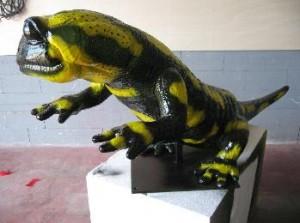 animales-salamandra-3