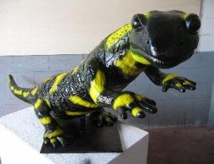animales-salamandra-4